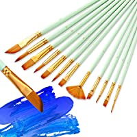 Wolii Artist Paint Brush Set,12Pcs Nylon Hair Artist Painting Brush Kit with Fan-shaped art brush for Acrylic, Oil…