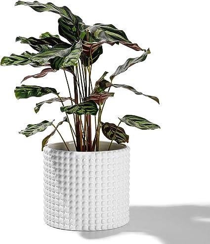 Flower Pot Vintage Ceramic Mint Green Flower Pot Vase with Removable Insert Indoor Planter 19 Hole Insert Centerpiece