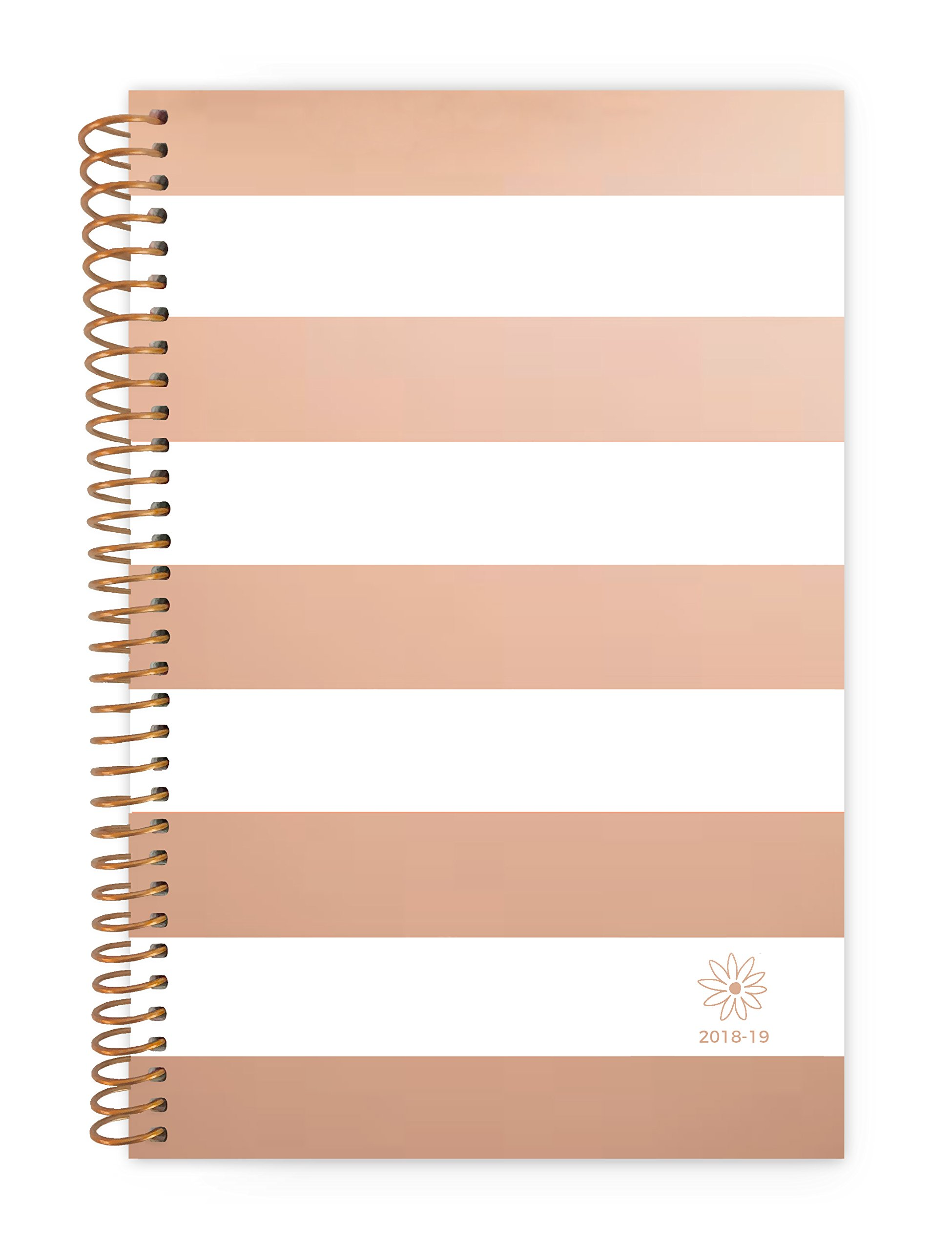Bloom Daily Planners 2018-2019 Academic Year Day Planner - Monthly Weekly Calendar Book - Inspirational Dated Agenda Organizer - (August 2018 - July 2019) - 6'' x 8.25'' - Rose Gold Stripes