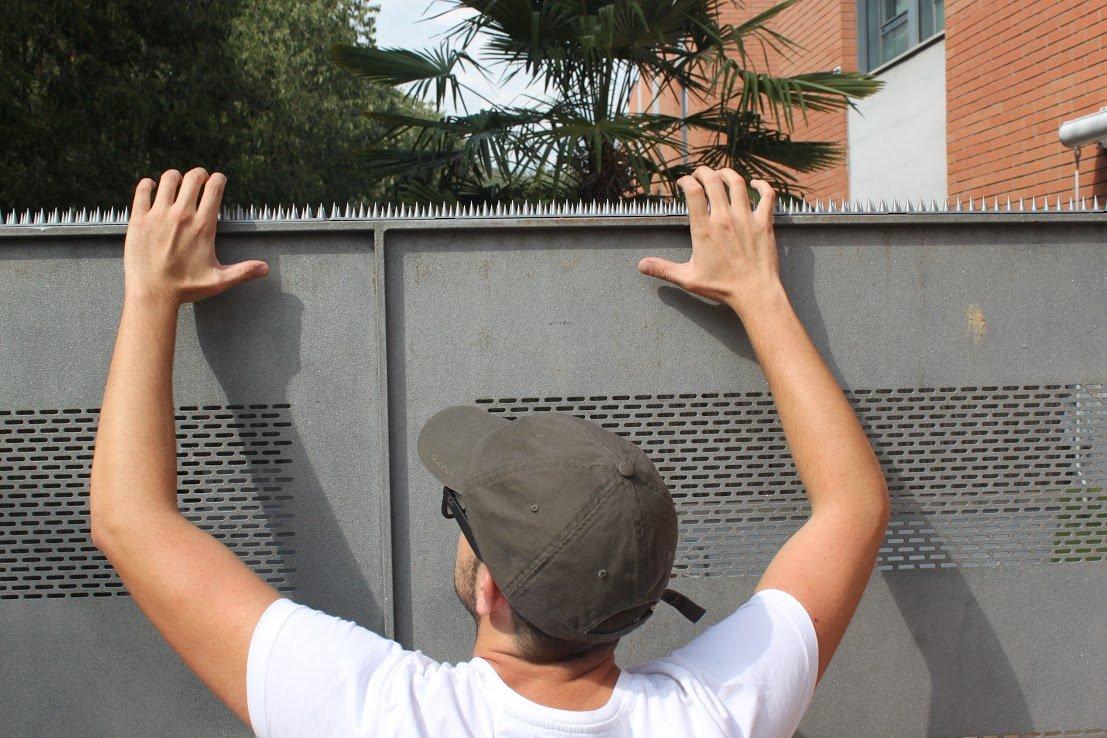 5 Mt Pinchos Anti-aves y anti-gatos 10 Piezas de 50cm Polipropileno anti UV (Verde): Amazon.es: Bricolaje y herramientas