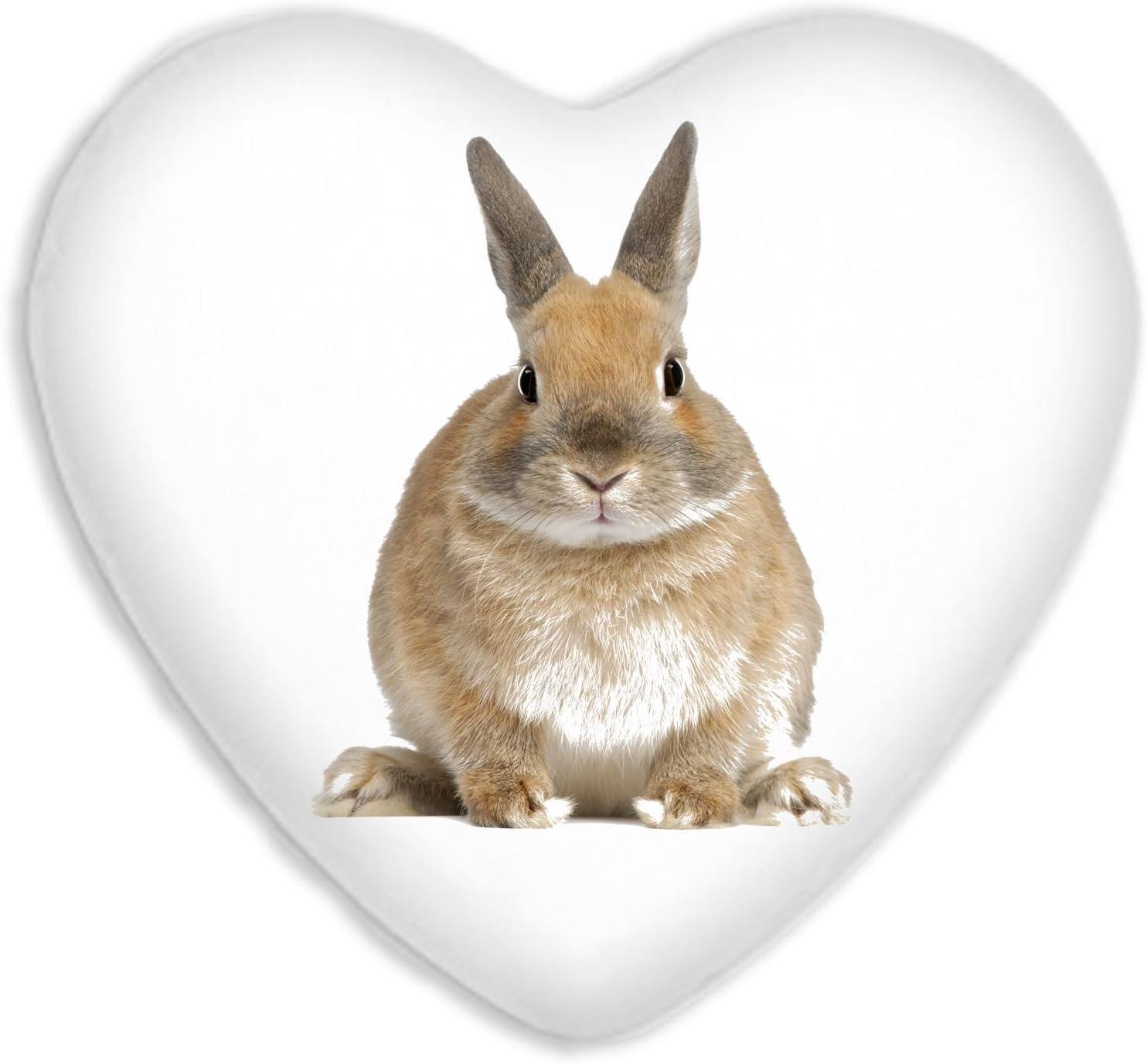 Rabbit Cute Animals Faux Silk Heart Shaped Sofa Cushion