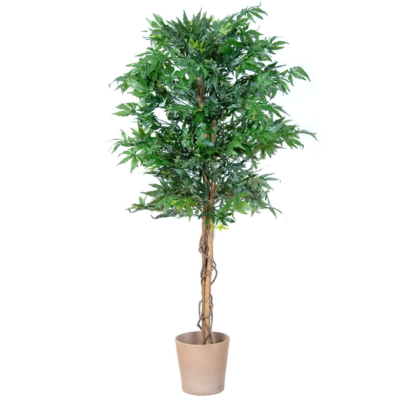PLANTASIA Marihuana-Strauch, Echtholzstamm, Kunstbaum, Kunstpflanze - 150 cm, Schadstoffgeprüft Schadstoffgeprüft