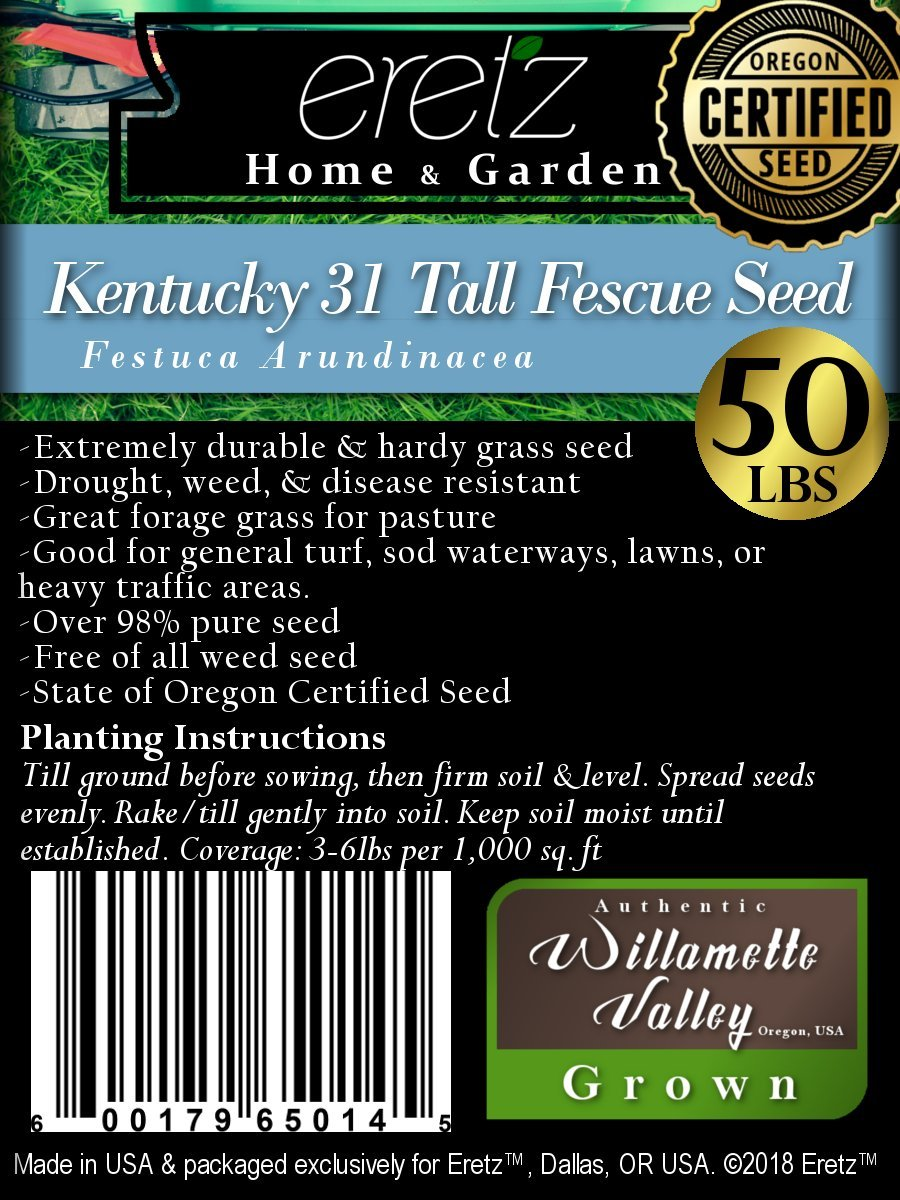 Kentucky K31 Tall Fescue Grass Seed by Eretz - Willamette Valley, Oregon Grown (50lbs)