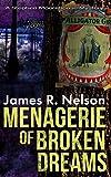 Menagerie of Broken Dreams
