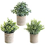 THE BLOOM TIMES Set of 3 Small Potted Artificial Plants Plastic Fake Greenery Faux Plants in Pots for Rustic Home Office Desk
