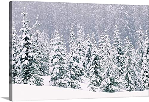 Snow Covered Pine Trees Canvas Wall Art Print