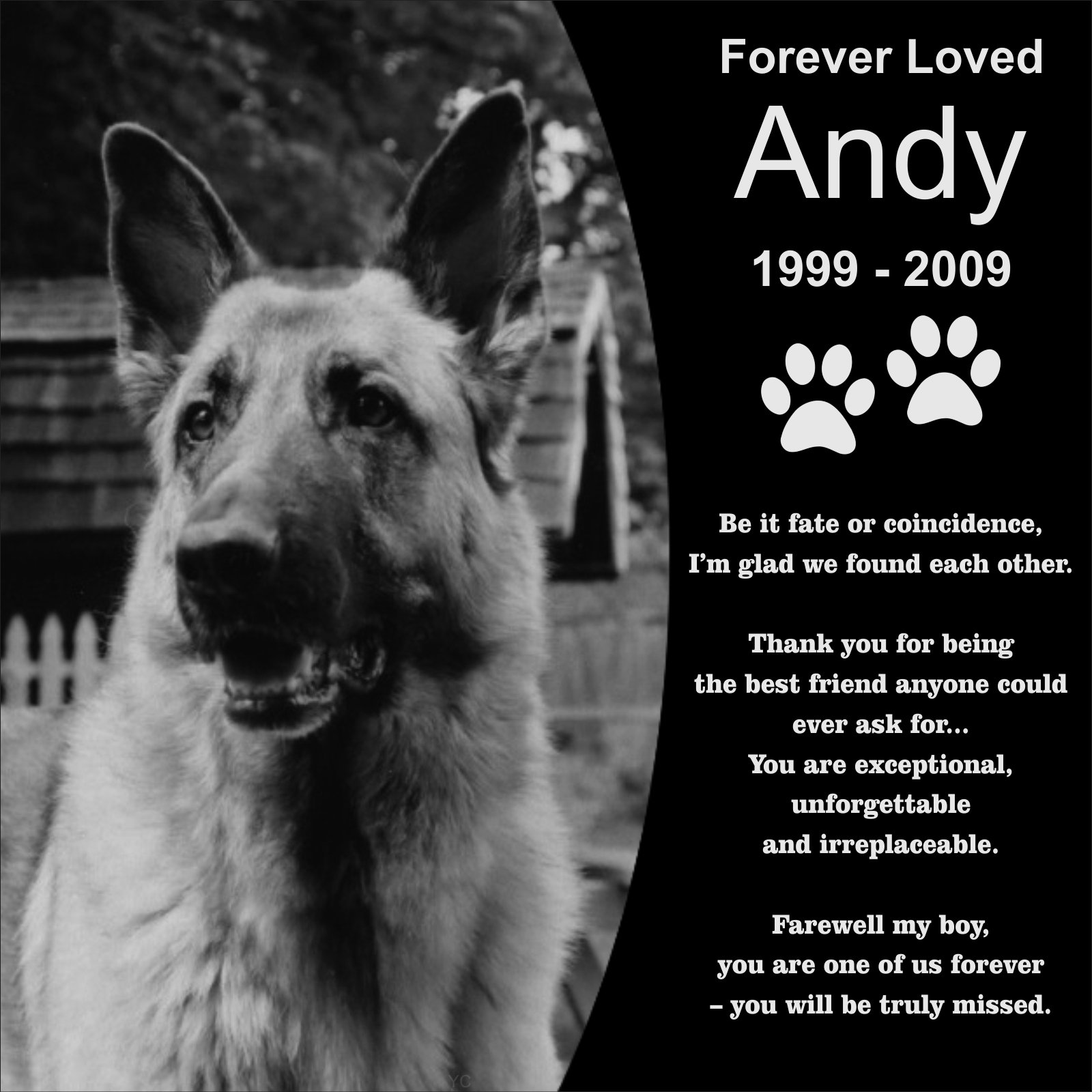 Personalized Pet Memorial 12''x12'' Engraved Black Granite Grave Marker Head Stone Plaque for Dog Cat All Pets BreedsAND2