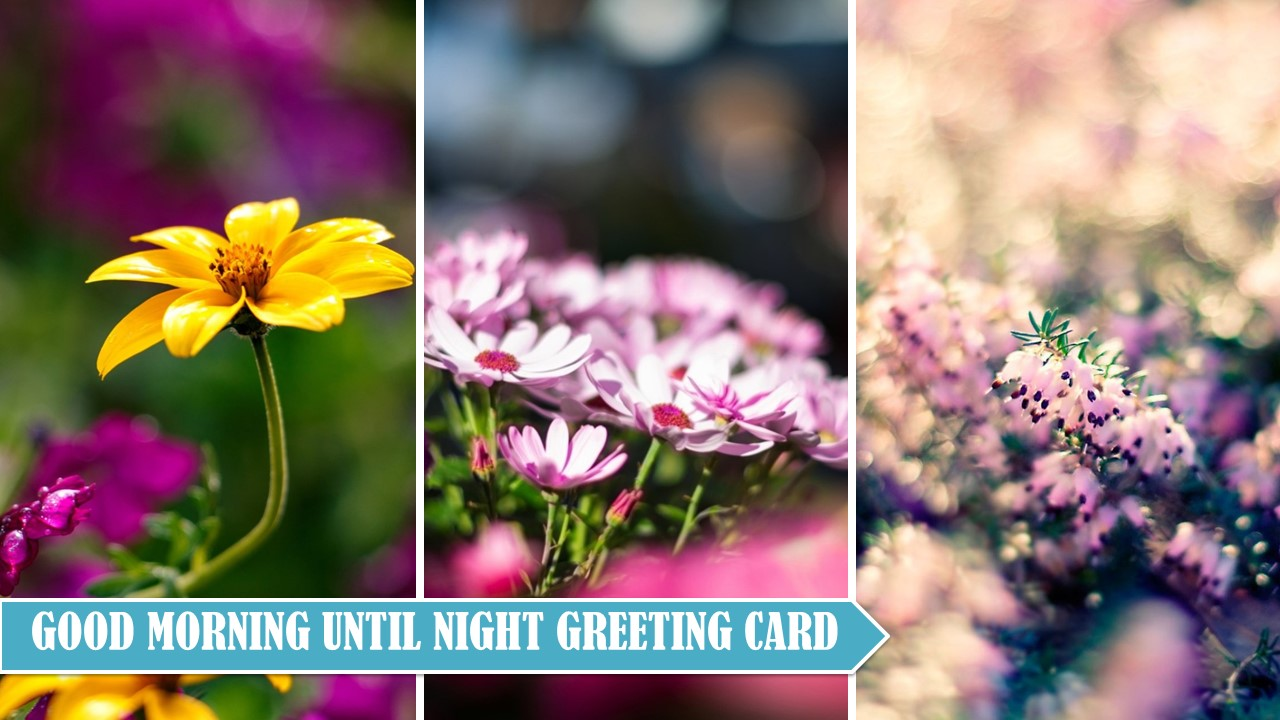 Amazon Good Morning Afternoon Evening Night Greeting Cards
