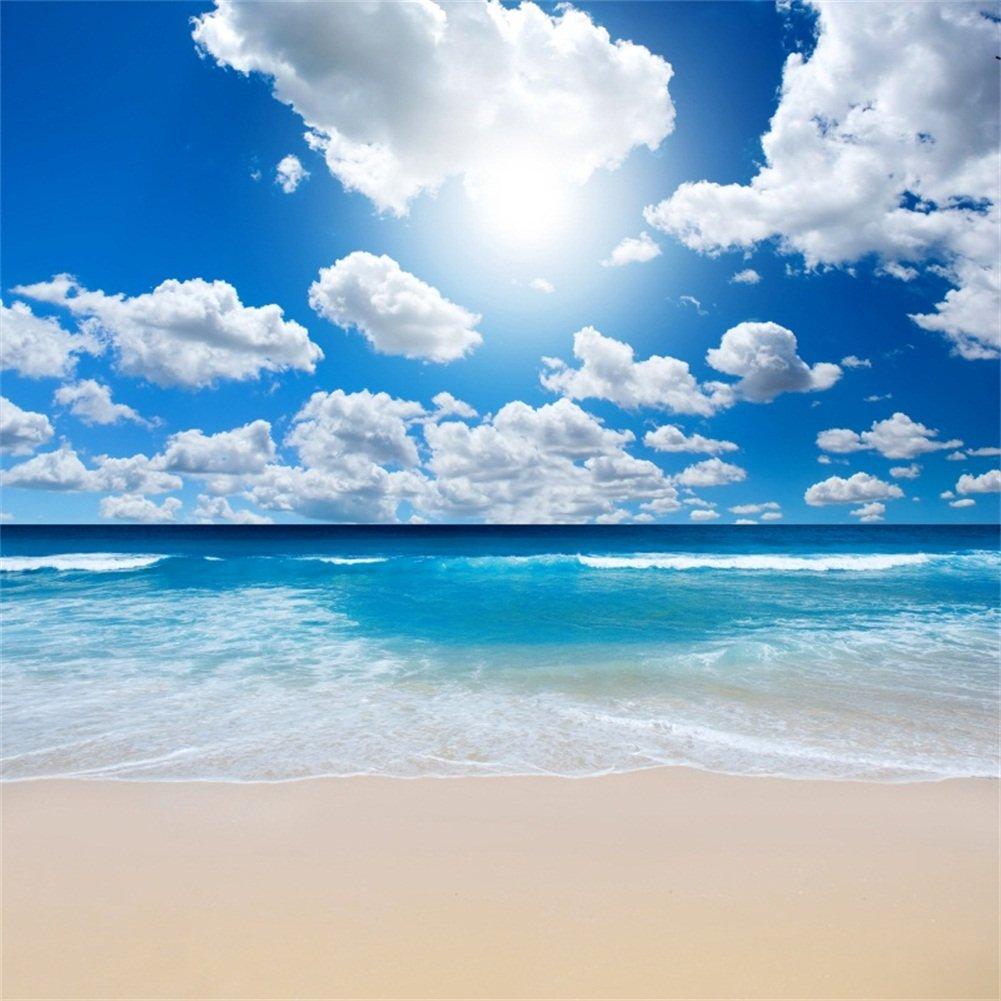 YongFoto 3x2m Vinyle Toile de Fond Plage Tableau Paysage Mer Ciel Bleu Nuages Blancs Fond pour Photo Portrait Studio Photo Banner Video Hawaii Partie Photobooth Photographie Props