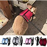 Rockruck Rabbits Ferret Guinea Pig Mesh Walk-Vest Pet Harness and Leash for Small Pets (S, Red)