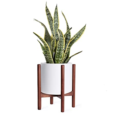 Kingbuy Plant Stand Mid Century Wood Flower Pot Holder, Simple Display Potted Rack, Modern Home Decor (Note: Plant Pot and Plant are not Included), 8inch Brown : Garden & Outdoor