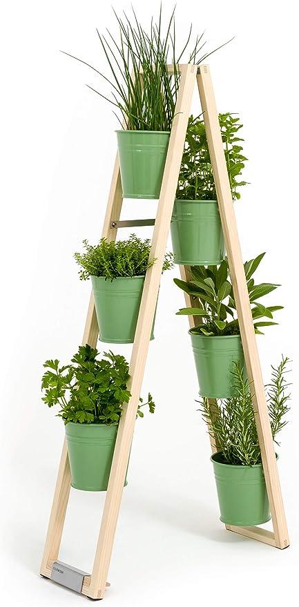Estantería Escalera, Jardinera para Plantas, Flores Escalera, Hierbas ollas 2 en 1, Puede Estar Libre o hochgestellt en una Pared reposabrazos, Blassgrün: Amazon.es: Jardín