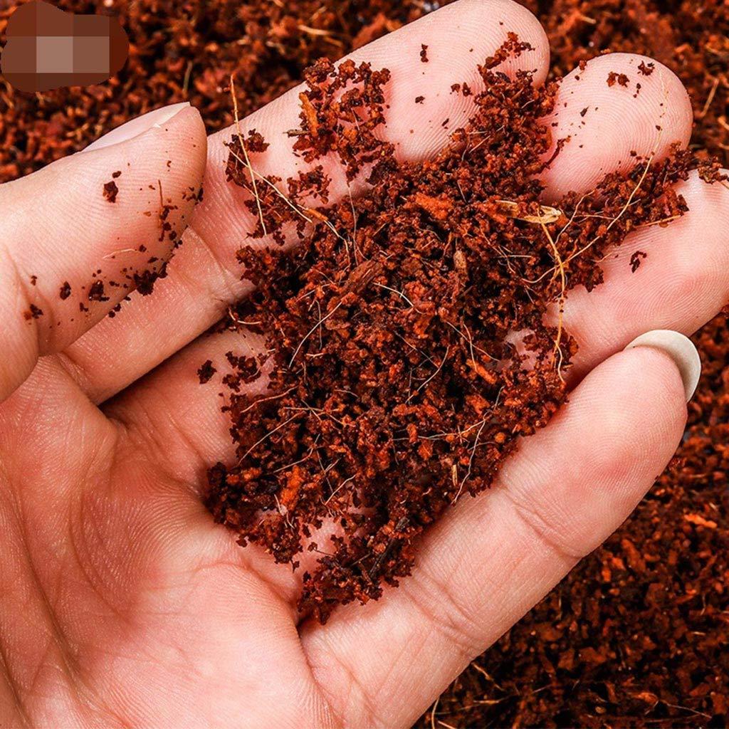 Ladrillos de Fibra de Coco para Reptiles y Anfibios Yanhonin sustrato