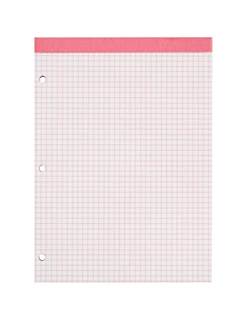 Amazon.Com : Ampad 20-287, Evidence Dual Pads, Letter Size, Pink