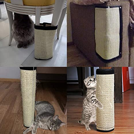 Hunt Gold - Esterilla para rascar Gatos, diseño de sisal: Amazon ...