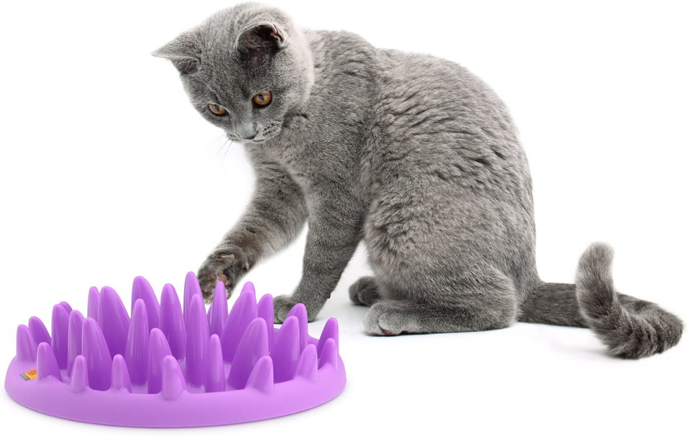 The Company of Animals Catch Interactive Feeder