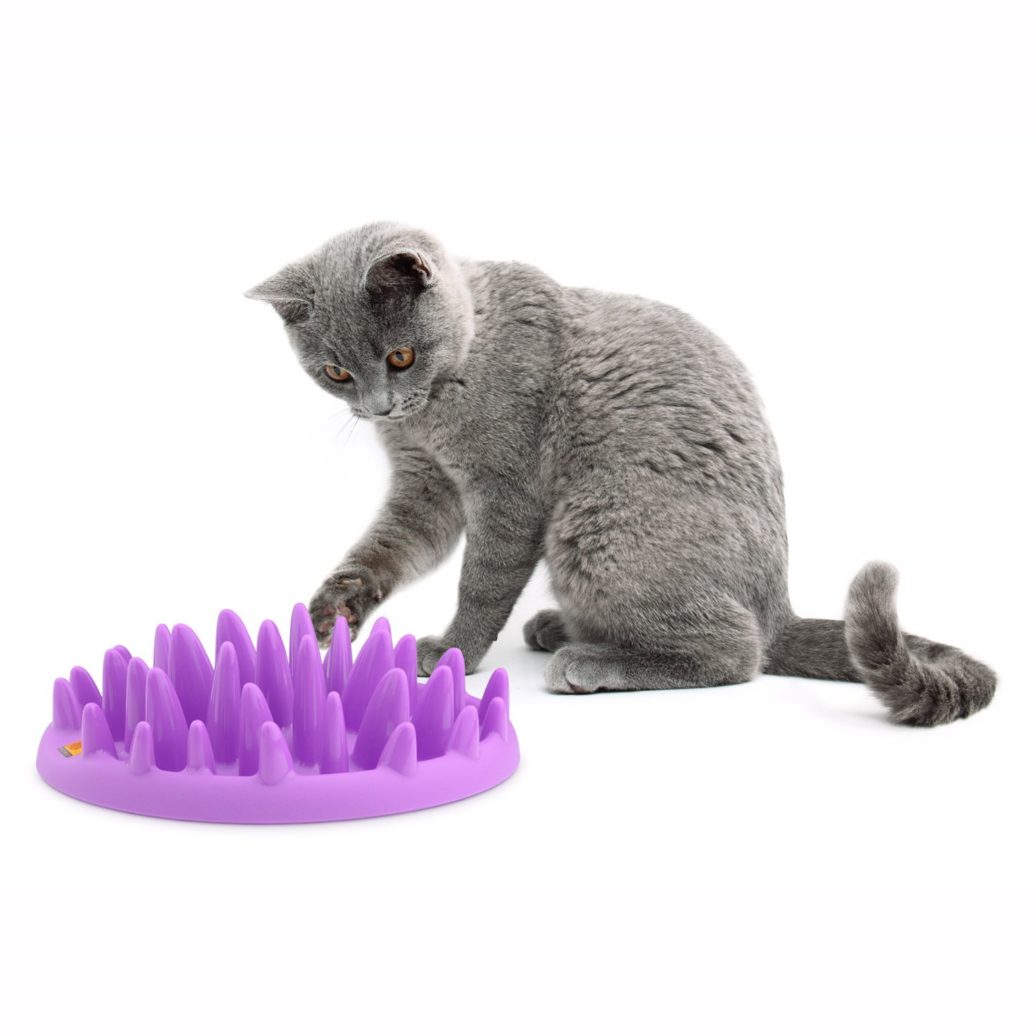 The Company of Animals Northmate Interactive Cat Feeder Slow Feed Bowl