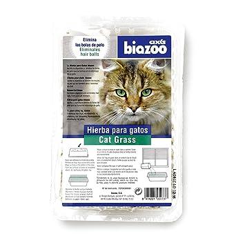 PACK 7 X HIERBA PARA GATOS CONTRA LAS BOLAS DE PELO: Amazon.es: Productos para mascotas