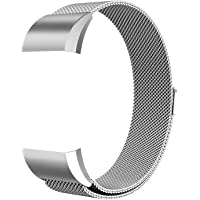Robustrion Stainless Steel Mesh Milanese Loop Strap with Adjustable Magnetic Closure Band for Fitbit Charge 2 - Silver