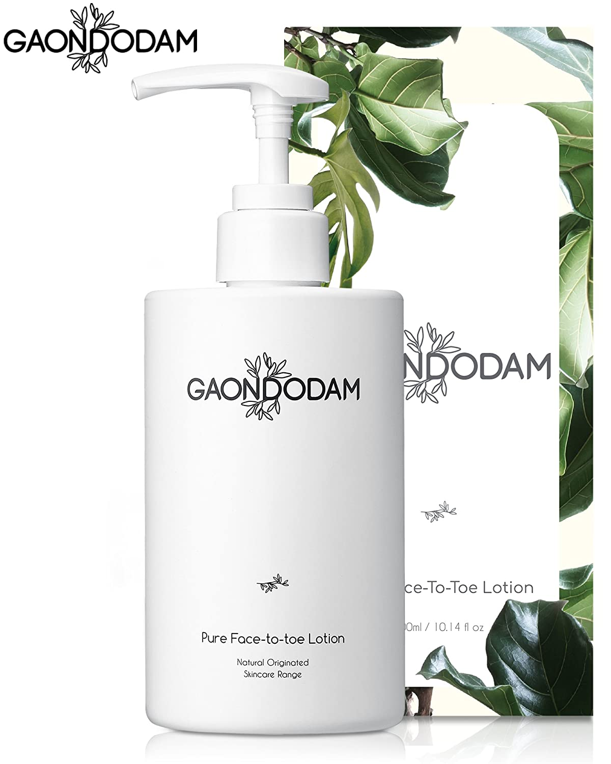 [GAONDODAM] Daily Moisturizing Body Lotion for Dry Skin, Shea Butter Advanced Intensive Moisturizer Cream for Pure Face to Toes (300 ml/ 10.14 fl.oz)