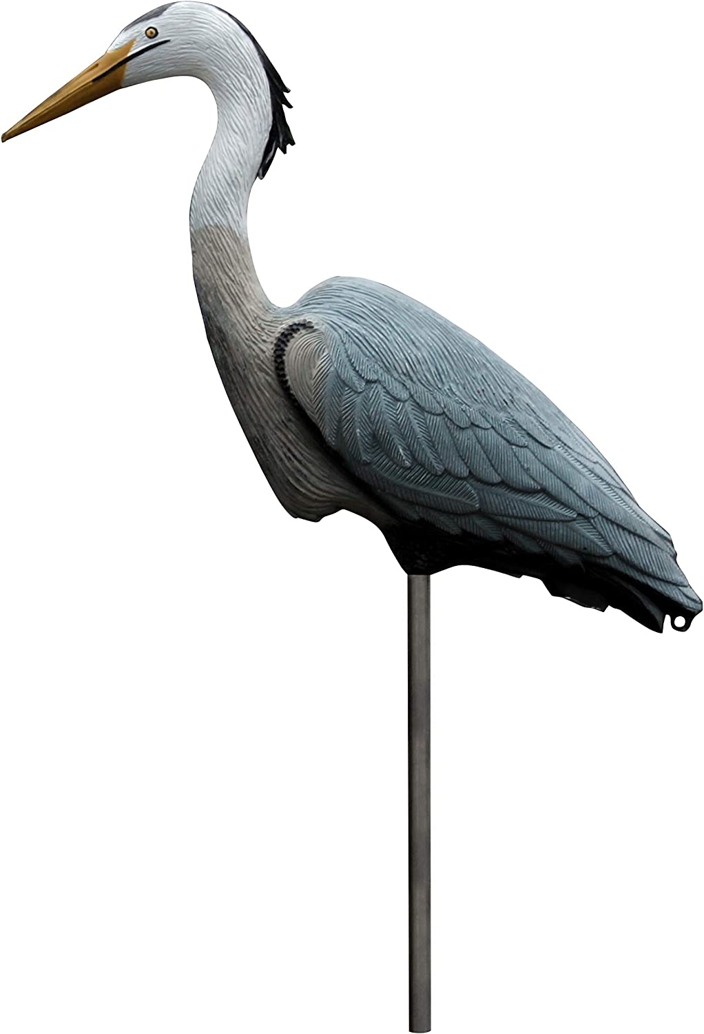 Amazon.com : Flambeau Outdoors 5960CD Great Blue Heron Decoy, Includes  Metal Stake - 1-Pack : Hunting Decoys : Clothing
