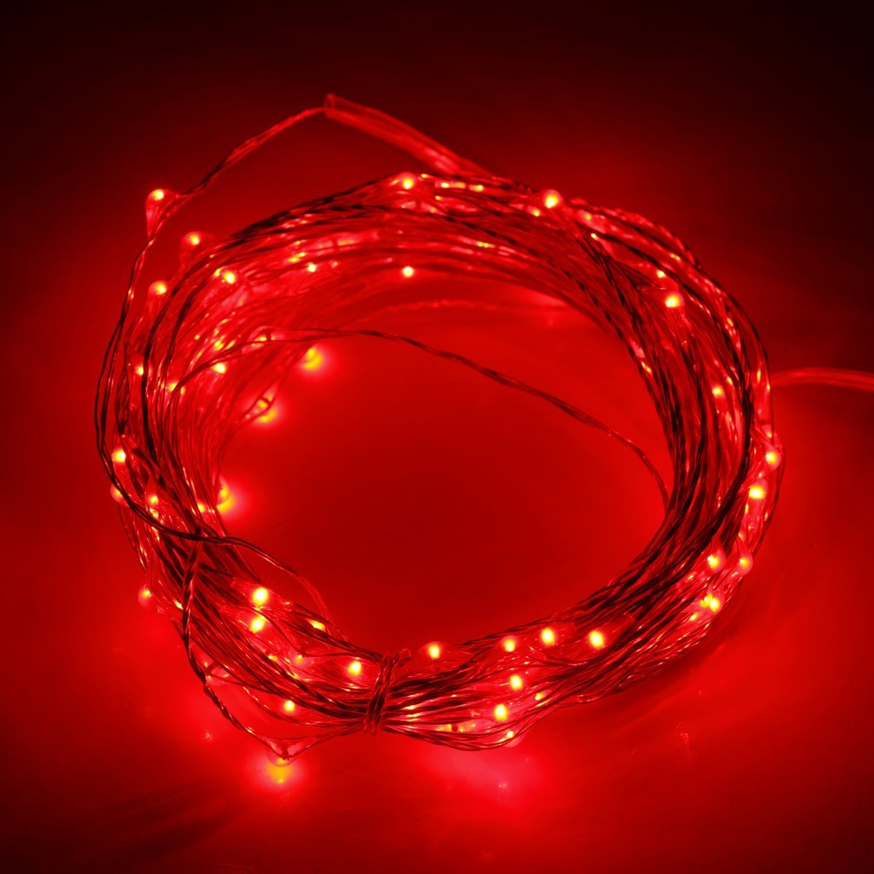 Ryham LED luci della stringa Luce di Natale 30 LED 3M luci 9.8ft esterna coperta impermeabile stellata String filo di rame, Rosso Ryham Optoelectronics Co. Limited