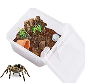 PETLAOO Critter Keeper,Mini Insect Carrier, Portable, Ventilated, Enough Viewing Space, with 5 Accessories, Suitable for Spiders, Geckos, Cockroaches, Snails, Hermit Crabs(Flowerpot)