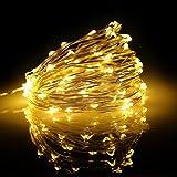 Onoper Stringa Luci LEDs fiocco di neve in Rame, Pieghevole, Colore Bianco Caldo, Per Uso Interno Ed Esterno, Uso Giardino, Matrimoni, Alberi, Festini o decorazioni natalizi. (10M)