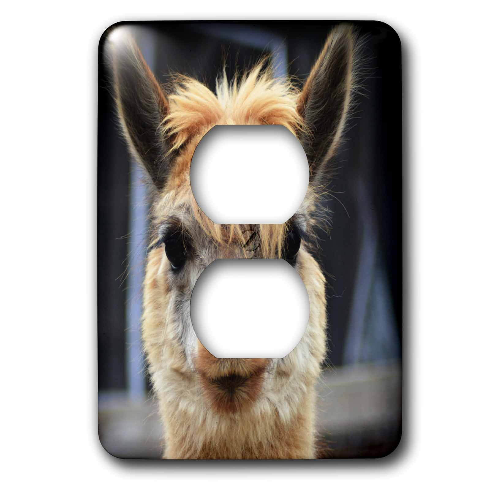 3dRose WhiteOaks Photography and Artwork - Lamas - Fuzzy Nose Lama is a photo of lama showing its fuzzy nose - Light Switch Covers - 2 plug outlet cover (lsp_265337_6)