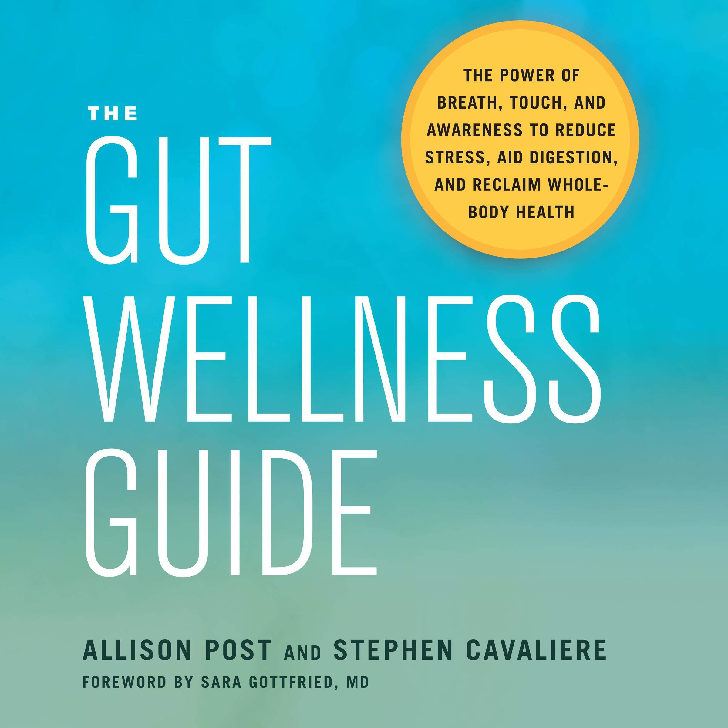 The Gut Wellness Guide  The Power Of Breath Touch And Awareness To Reduce Stress Aid Digestion And Reclaim Whole Body Health