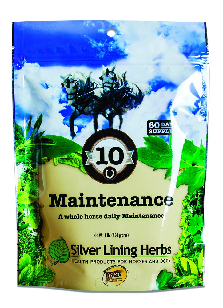Equine Daily Maintenance | Supports and Maintains a Healthy Horse in Peak Mental and Physical Condition | Promotes Healthy Coat and Skin | 1 Pound Resealable Bag | Made By Silver Lining Herbs in the USA of Natural Herbs by Silver Lining Herbs