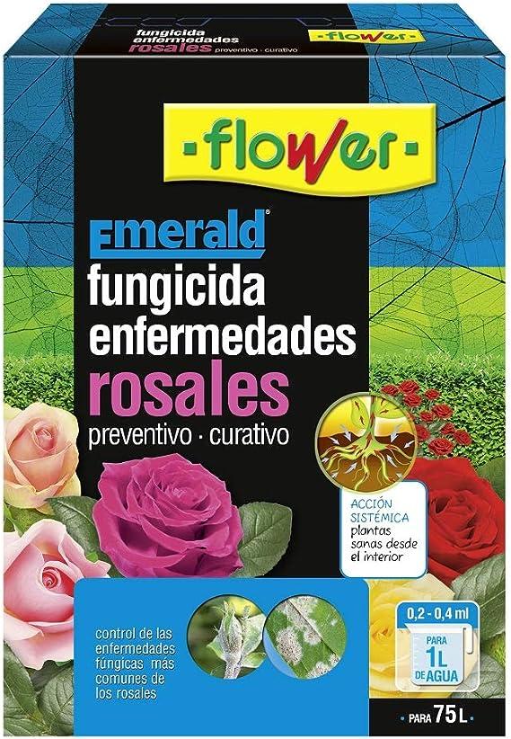 Flower Enfermedades Rosales 10ml único Amazon Es Jardín
