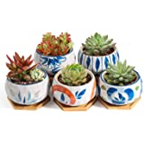 T4U Japanese Style 4.25 Inch Ceramic Bowl Shape Succulent Plant Pot with Bamboo Tray - Collection of 5