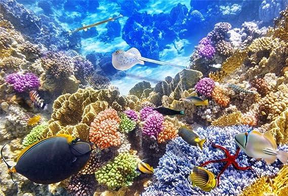 YongFoto 1,5x1m Vinilo Fondo de Fotografia Mundo Submarino Acuario Pescado Coral Arrecife Telón de Fondo Fiesta Niños Boby Boda Adulto Retrato Personal ...
