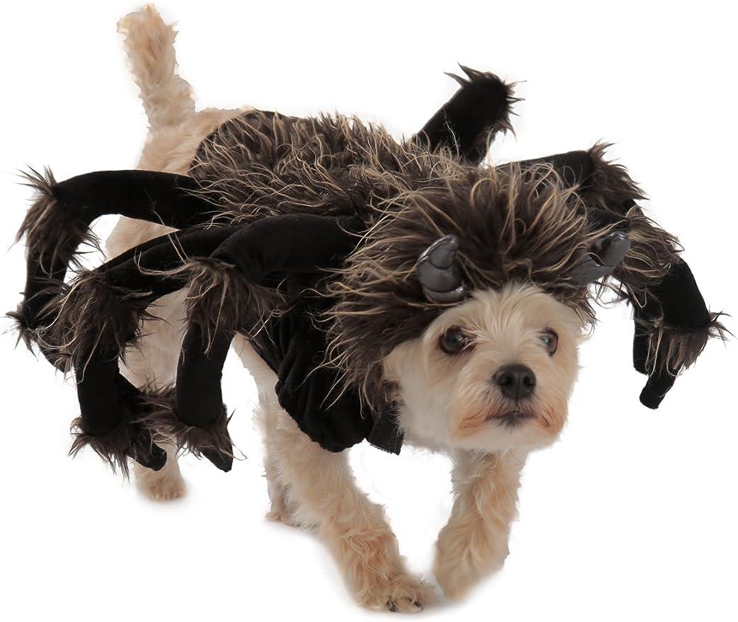 Princess Paradise Tarantula Dog Costume, Black, Large
