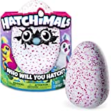 Hatchimals 6028874 Uovo Interattivo Hatchimals, Pengualas, Rosa