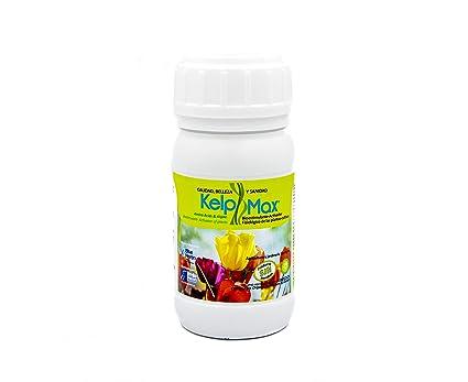 KelpMax (400 m2; Vitaminas/Aminoácidos/Algas; Fertilizante Concentrado. Potente Bio