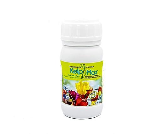 KELPMAX® (1.000 m2; Nutricional/Péptidos/Vitaminas/Algas; Potente ...