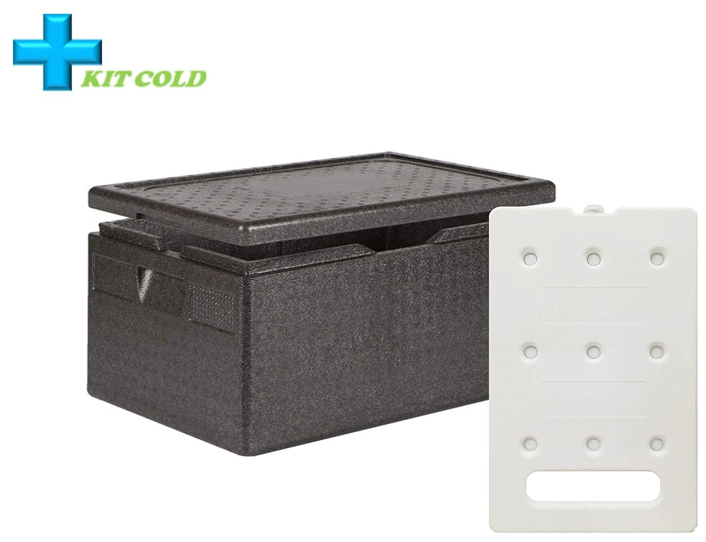 Kit de frío – 1 contenedor de 46 litros + 1 placa fría de 4 kg: Amazon.es: Industria, empresas y ciencia