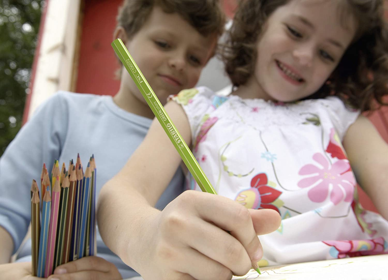 /Étui carton de 12 crayons de couleur Coloris assortis Crayon de coloriage STABILO GREENcolors