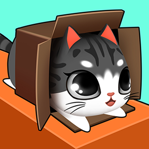- Kitty in the Box