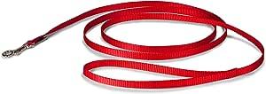 "PetSafe Nylon Leash, 3/8"" x 6', Red"