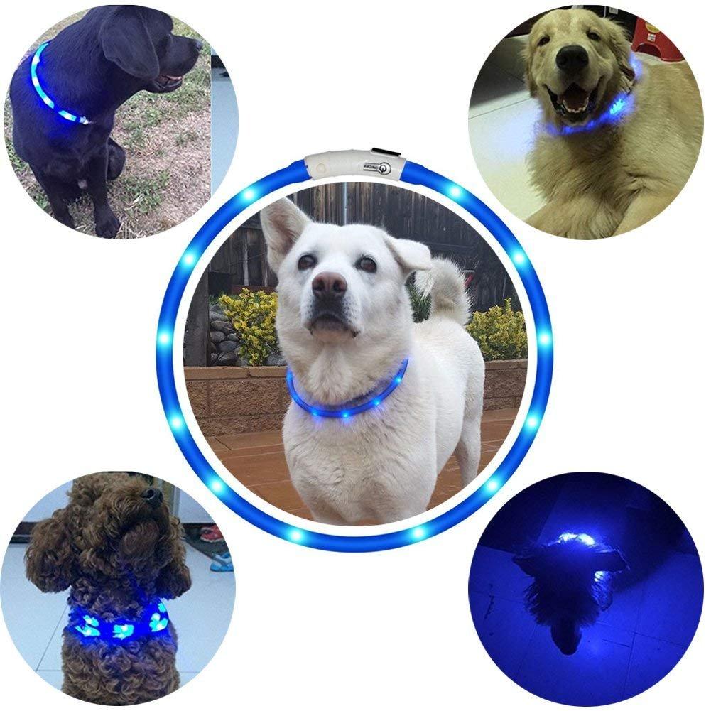 Hunde Leuchthalsband LED Halsband Hundehalsband Hunde, individuell kürzbar, USB aufladbar, Kabel im Lieferumfang enthalten, von Fashion&Cool (Blau)