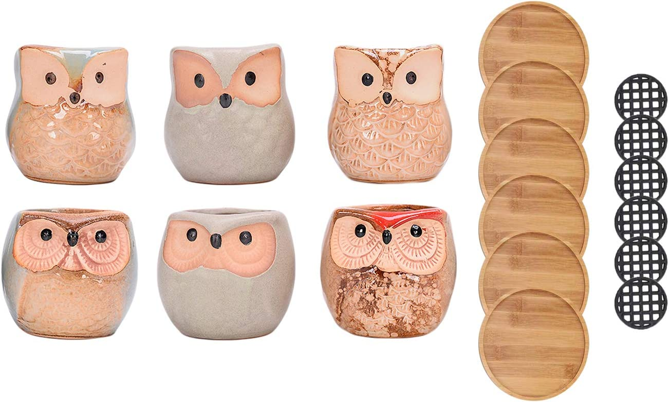 Hearthside Classics Owl Shaped Glazed Ceramic Succulent, Bonsai, Cactus Pot for Home and Office Decoration; with a Drainage Hole, Set of 6
