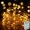 NSOP 33Ft 100-LED Battery Powered Fairy String Lights