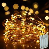 NSOP 33Ft 100-LED Battery Powered Fairy String Lights
