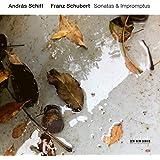 Schubert: Sonatas & Impromptus [2 CD]