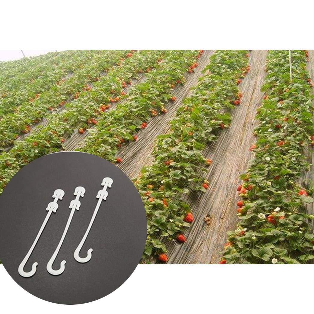 Fenido 50 Packungen Tomaten Fr/üchte Haken Kunststoffhaken Gartenger/äte Werkzeugsets