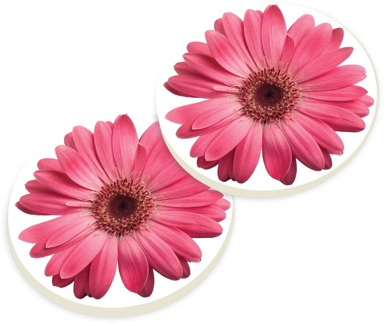 Pink Daisies 2 Piece Ceramic Car Coaster Set