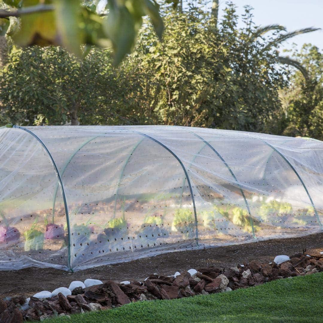Film para invernadero túnel 40 µm Catral: Amazon.es: Jardín